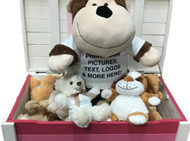 Personalised Toys